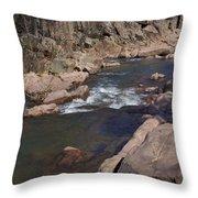 The Shut Ins -nature Art Print Throw Pillow
