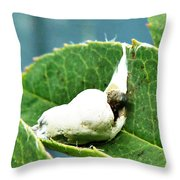 The Shy Cockatoo Throw Pillow
