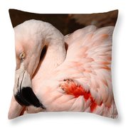 The Shy Flamingo Throw Pillow