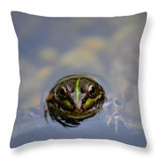 The Shy Frog Throw Pillow