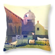The Side Of A Barn Throw Pillow