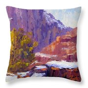 The Side Of The Road At Zion Throw Pillow