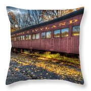 The Siding Throw Pillow