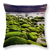 The Silence After The Storm Throw Pillow