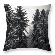 The Silent Season Throw Pillow