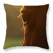The Silent Buzzing Throw Pillow