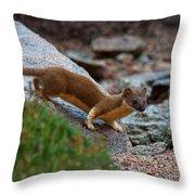 The Silent Hunter Throw Pillow
