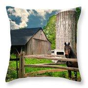 The Silo Horse Throw Pillow