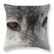 The Silver Gleam Throw Pillow