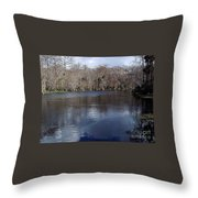 The Silver River Throw Pillow