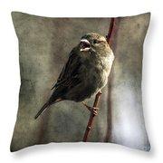 The Singing Sparrow Throw Pillow