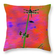 The Skimmer And The Whitetail Art #2 Throw Pillow