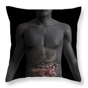 The Small Intestines Throw Pillow