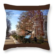 The Smithsonian Natural History Museum Washington Dc Throw Pillow