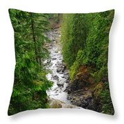 The Snowqualmie River Throw Pillow