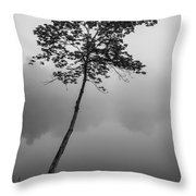 The Solitary Tree Throw Pillow