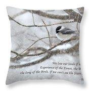 The Song Of The Birds Throw Pillow
