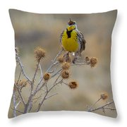 The Song Of The Lark Throw Pillow