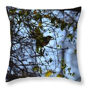 The Song Of Winter Throw Pillow