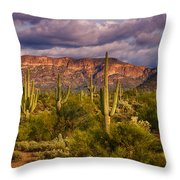 The Sonoran Golden Hour  Throw Pillow