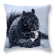 The Sought After Prize Throw Pillow