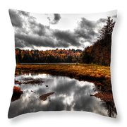 The South End Of Cary Lake Throw Pillow
