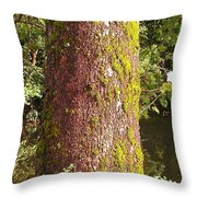The South Side Throw Pillow
