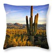 The Southwest Golden Hour  Throw Pillow