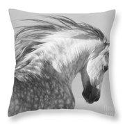 The Spanish Stallion Tosses His Head Throw Pillow