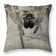 The Spider Series Xii Throw Pillow