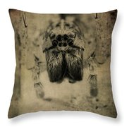 The Spider Series Xiii Throw Pillow