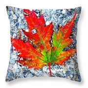 The Spirit Of Autumn Throw Pillow
