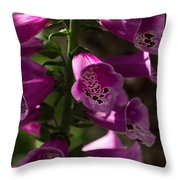 The Splendor Of Foxgloves Throw Pillow