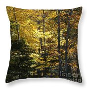 The Splendor Of Yellow   Throw Pillow