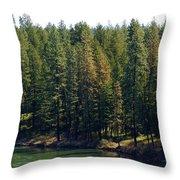 The Spokane River On Easter Sunday 2014 Throw Pillow
