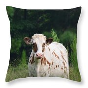 The Spotted Cow Throw Pillow