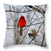 Blue Eyes In The Snow Cardinal  Throw Pillow