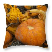The Squash Harvest Throw Pillow