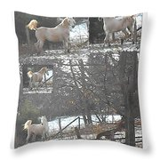 The Stallion Lives In The Country Throw Pillow