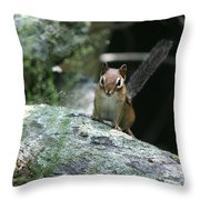 The Stand Off  Throw Pillow