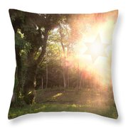 The Star Of David Appeared Throw Pillow