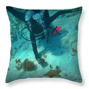 The Star Of The Scene Throw Pillow