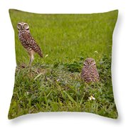 The Stares Of The Burrowing Owls Throw Pillow