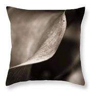 The Stately Lily Stands Fair Throw Pillow