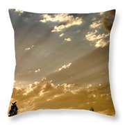 The Storm Is Pending Throw Pillow