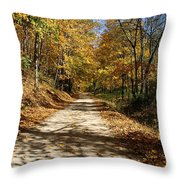 The Straight Road Throw Pillow