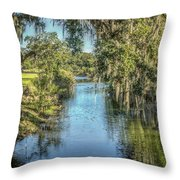 The Stream Throw Pillow