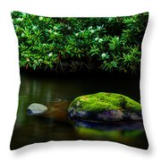 The Stream's Embrace Throw Pillow