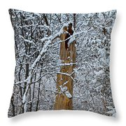 The Strength Of The Elderly Throw Pillow
