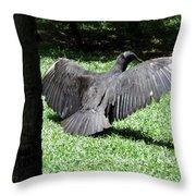The Strut Throw Pillow